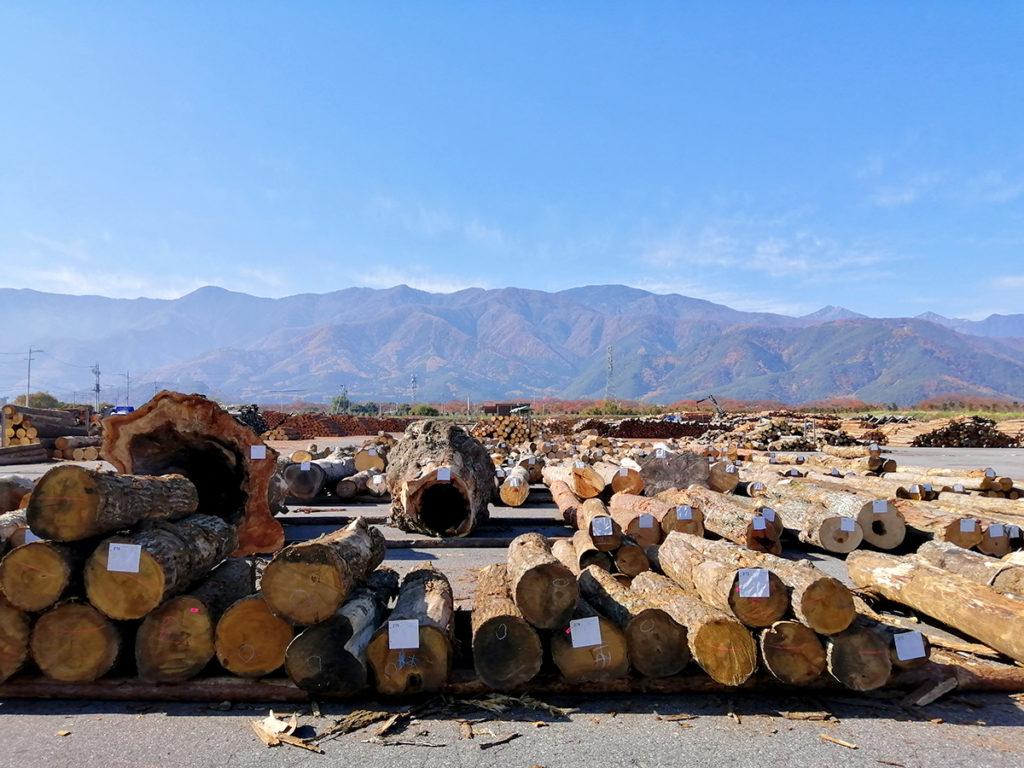 中信木材センター全景