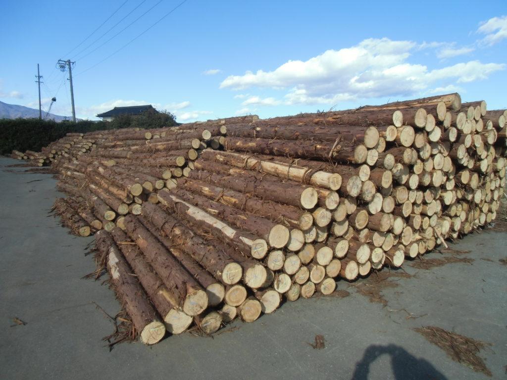 国有林ヒノキ 3m・4m